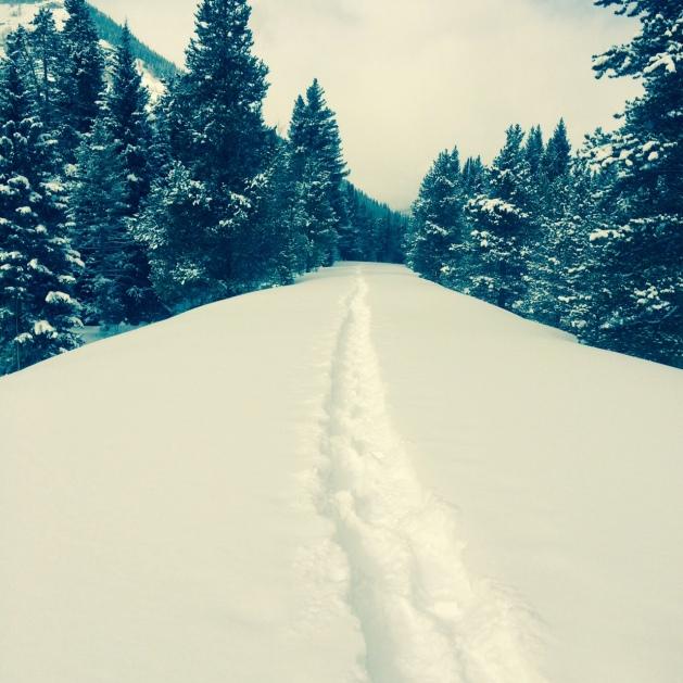 snowshoe4